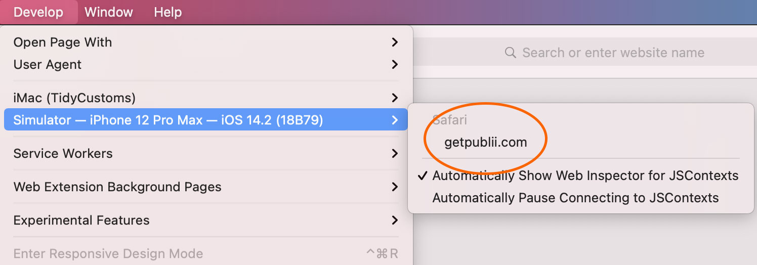 Enabling the Simulator in Safari